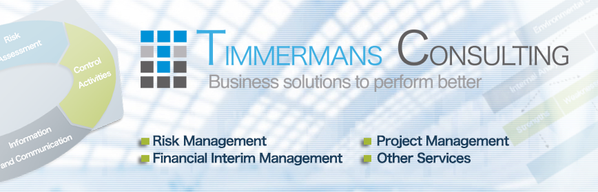 Timmermans Consulting Middelbeers - Business solutions to perform better